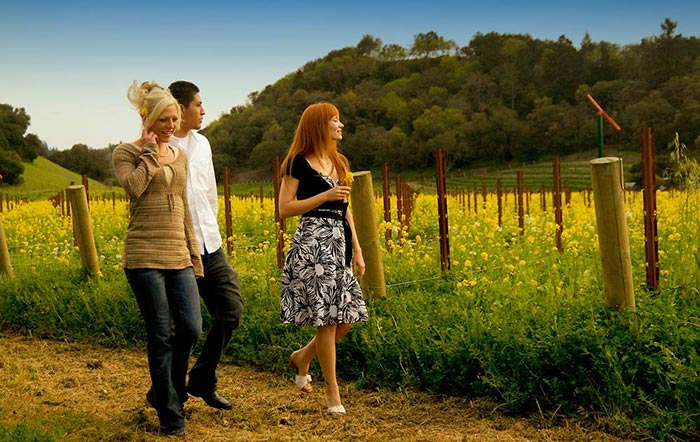 Napa Bed And Breakfast Winery Coupons