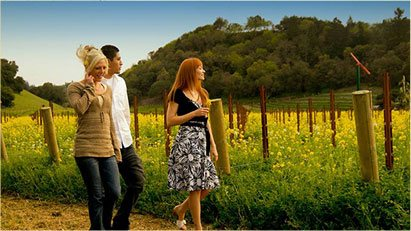 Two Women and a Man Walking Through a Winery